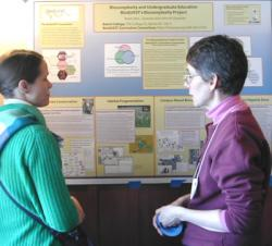 Workshop participants share ideas at the poster session