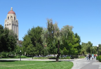 Stanford Career Prep 2010