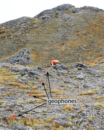 Deployment of geophones on an alpine bedrock surface