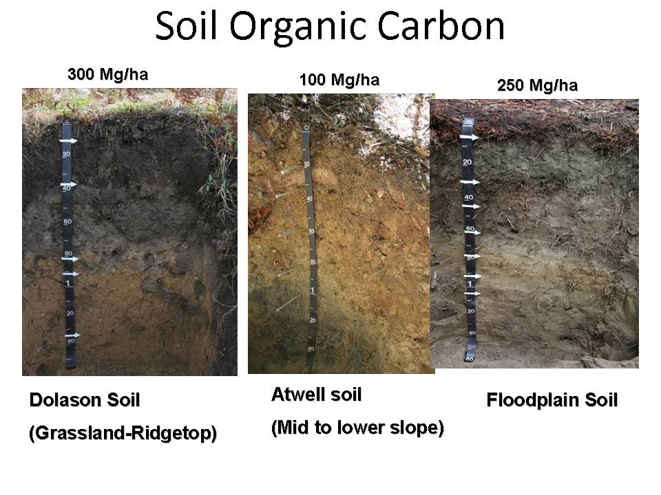 Soil profile images reverse search for Soil profile video