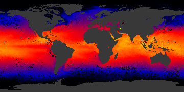 sea surface temp