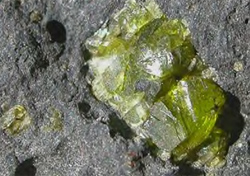 Olivine crystal in basalt