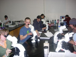 Student at microscopes