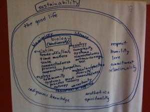 Biology Sustainability Diagram