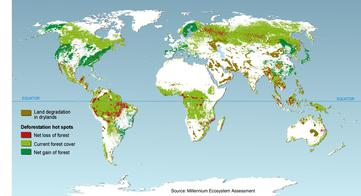 Deforestation Hot Spots