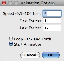 Animation Options