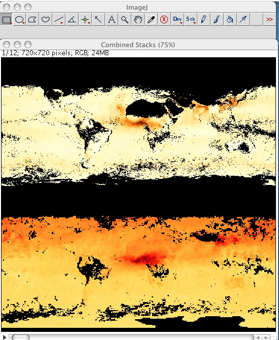 ImageJ Combined window