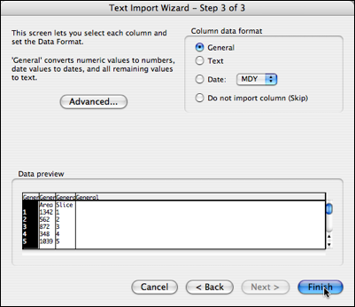 text import wizard 3