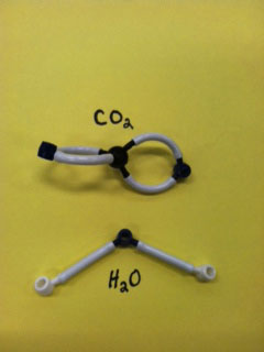 Carbon Dioxide and Water Molecules