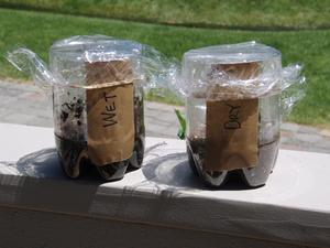 wet dry soil set up
