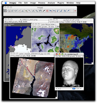 Sample of images in ImageJ