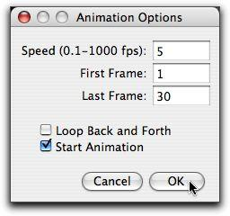 Animation Options Dialog Box