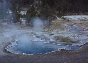 Octopus Spring in Yellowstone National Park