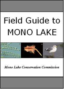 Cover of Mono Lake Field Guide