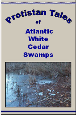 Protistan Tales of Atlantic White Cedar Swamps book cover