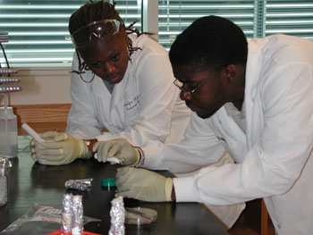 Shalynn Mills (left) and Ammar Hanif (right) isolate DNA from marine sponges