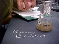 picture of student looking at a microbial culture in lab