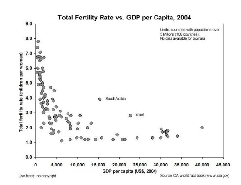 Fertility Rates w/ GDP per capita (Medium Size)