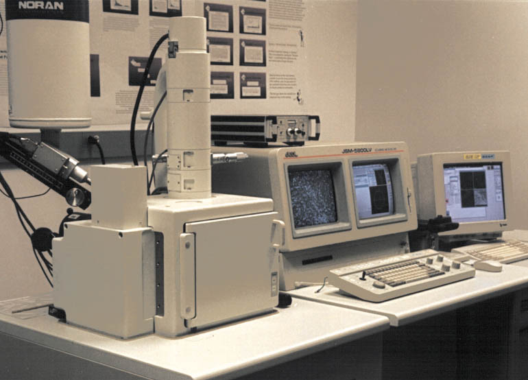 Electron Microscope For Sale | Products  Suppliers on GlobalSpec