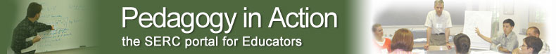 pedagogy in action teaching with interdisciplinary approach