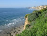 Cliff near Scripps Institute of Oceanography