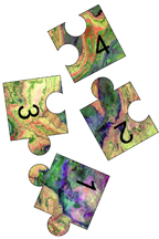 jigsaw puzzle pieces 3