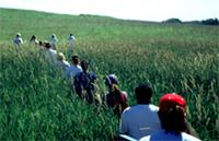Teachers in the Allwine Prairie on a field trip during this course.