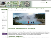 Go to /microbelife/yellowstone/index.html