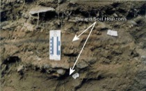 Buried soils in the Alluvial Fan Stratigraphy